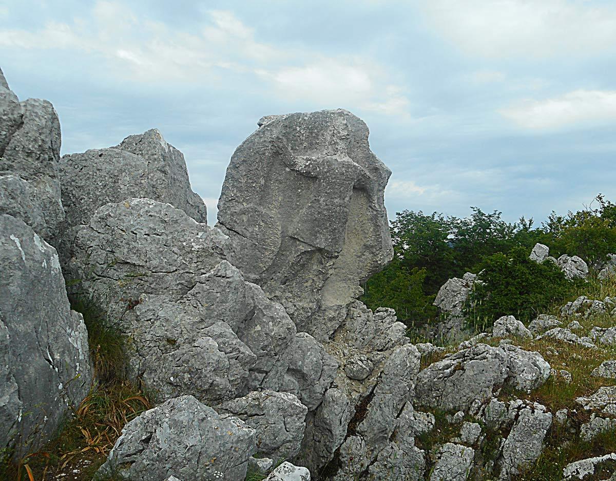 I monti Alburni e l'Antece