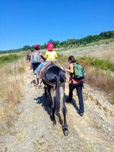trekking con asino